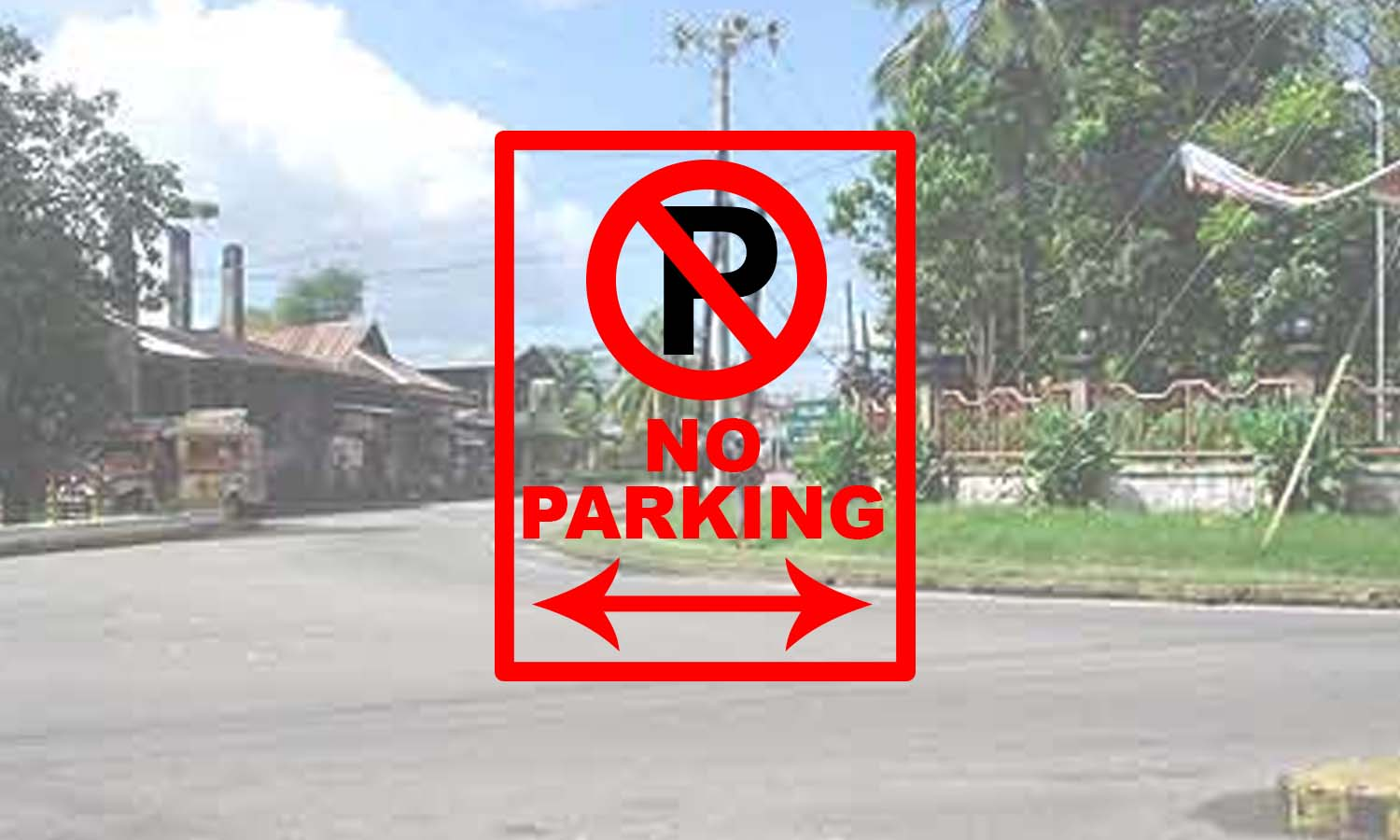 PARKING COVER